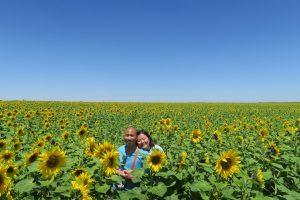 jizz_sunflower21