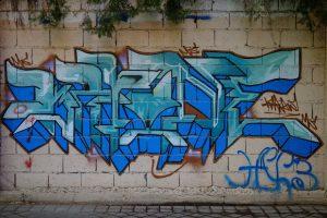 DSCF08611
