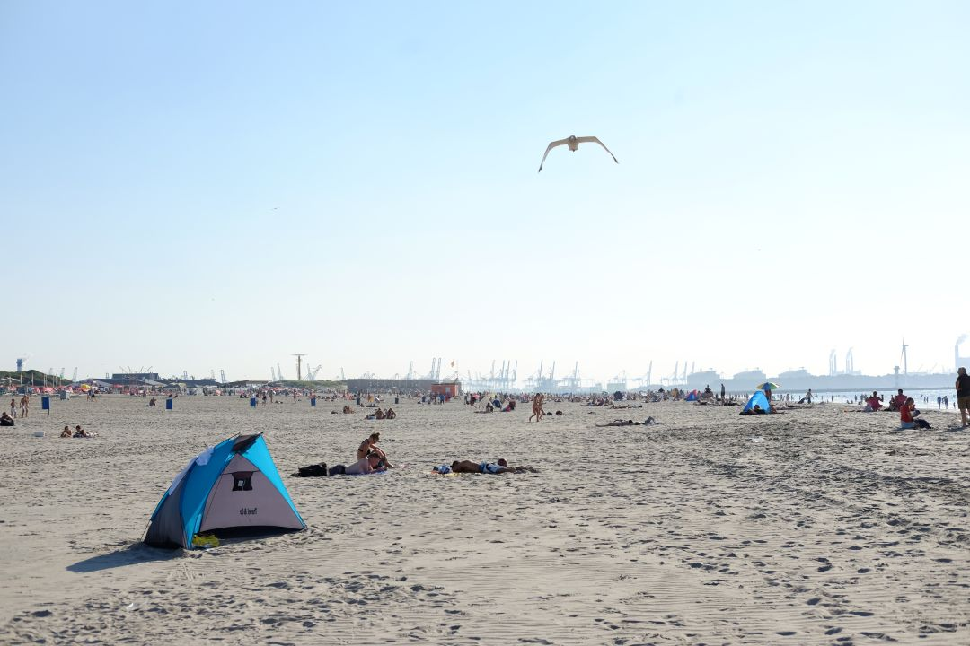 beaches_netherlands001
