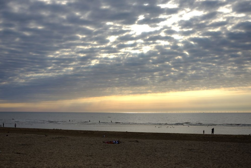 beaches_netherlands009