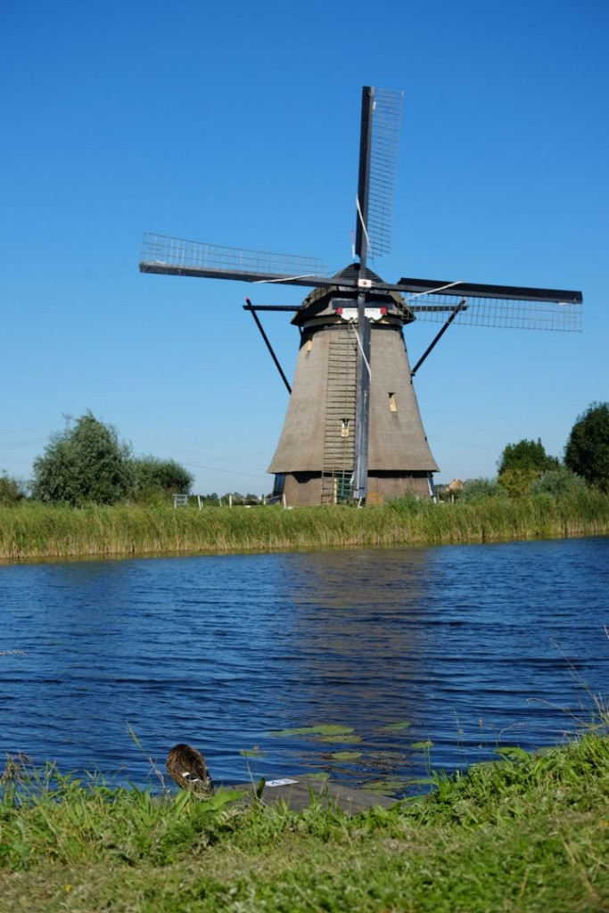 biking_in_kinderdijk_windmills001